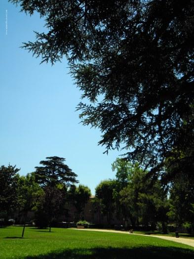 parc vue 1