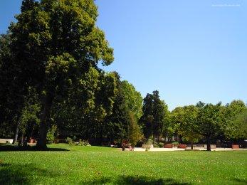 parc vue 3
