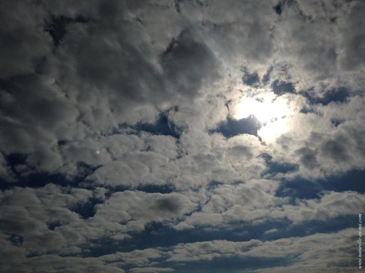 ciel-charge