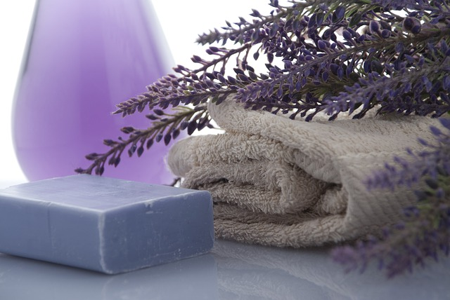 lavender-3066531_640